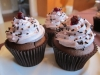 Cupcake-Chocolate-Cranberry-group